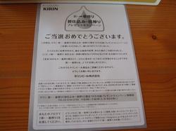 新・一番搾り 初仕込み・初搾り限定缶2.JPG